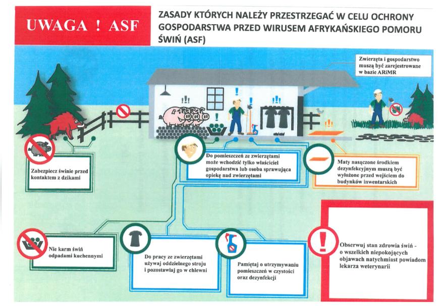 Uwaga! ASF. Zasady któych należy przestrzegać w celu ochron gospodarstwa przed wirusem afrykańskiego pomoru świń (ASF): zabezpiecz świnie przed kontaktem z dzikami, zwierzęta i gospodarstwo musząbyćzarejstrowane w bazie ARiMR, do pomieszczeń ze zwierzętami może wchodzić tylko właściciel gospodarstwa lub osoba sprawująca opiekę nad zwierzętami, maty nasączone środkiem dezynfekującym muszą być wyłożone przed wejściem do budynkó inwentarskich, nie karm świń odpadami kuchennymi, do pracy ze zwierzętami uzżywaj oddzielnego stroju i pozostawiaj go w chlewni, pamiętaj o utrzymywaniu pomieszczeń w czystości oraz dezynfekcji, obserwuj stan zdrowia świń- o wszelkich niepokojących objawach natychmiast powiadom lekarza weterynarii.