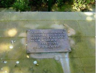 Zdjęcie Kamiennej płyty z tablicą na cmentarzu żydowskim w Jasienicy Rosielnej